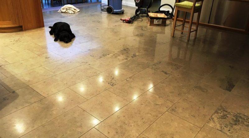 Limestone Floor Sealer Damaged By Dog Urine In Weybridge Tiling - How to clean dog urine from tile floors